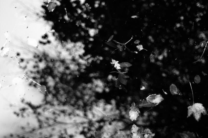 Black & White_05