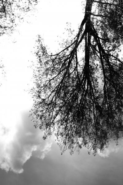 Black & White_07