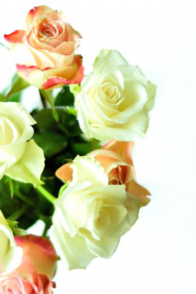 bloemen_04