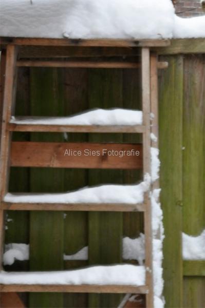 2010-12-19-12-33-33-sneeuw-jpg