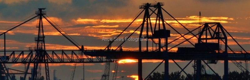 2010-09-09-20-04-14-fvs-fotodagboek-jpg