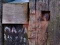 2010-08-31-20-08-59-fvs-buiten-jpg